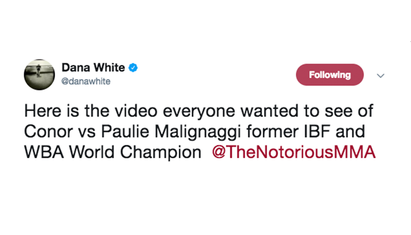 Dana White releases footage of McGregor vs. Malignaggi sparring session